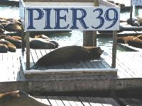 Pier 39, Fishermans Wharf, San Francisco