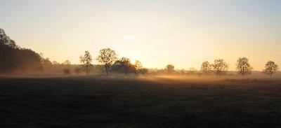 A mist gathering late afternoon